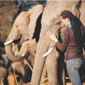 KRUGER LOWVELD REGION (Mpumalanga & Limpopo)